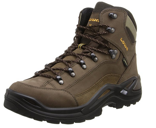 image of Lowa Renegade GTX best outdoor shoes