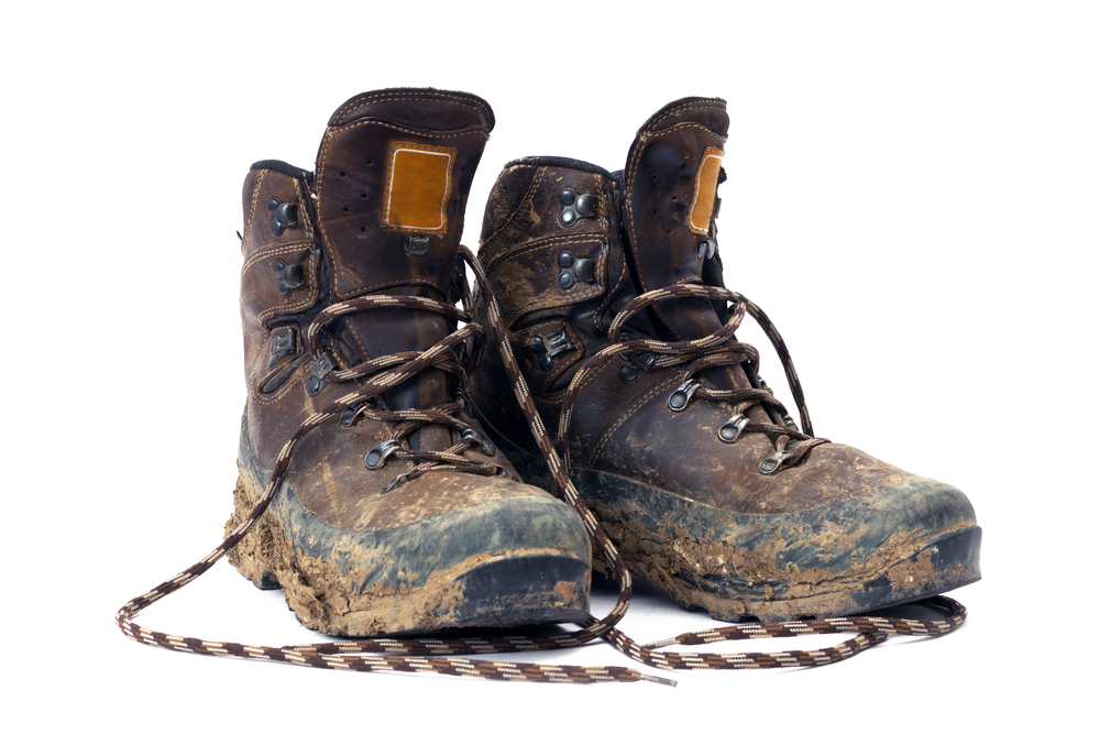 How To Clean Shoes Everything You Need To Know Nicershoes