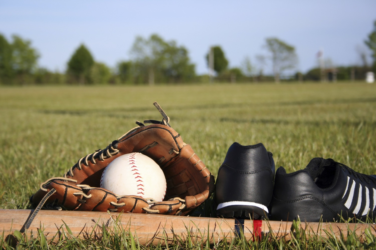 15 Best Baseball Cleats Reviewed & Rated in 2018 | NicerShoes