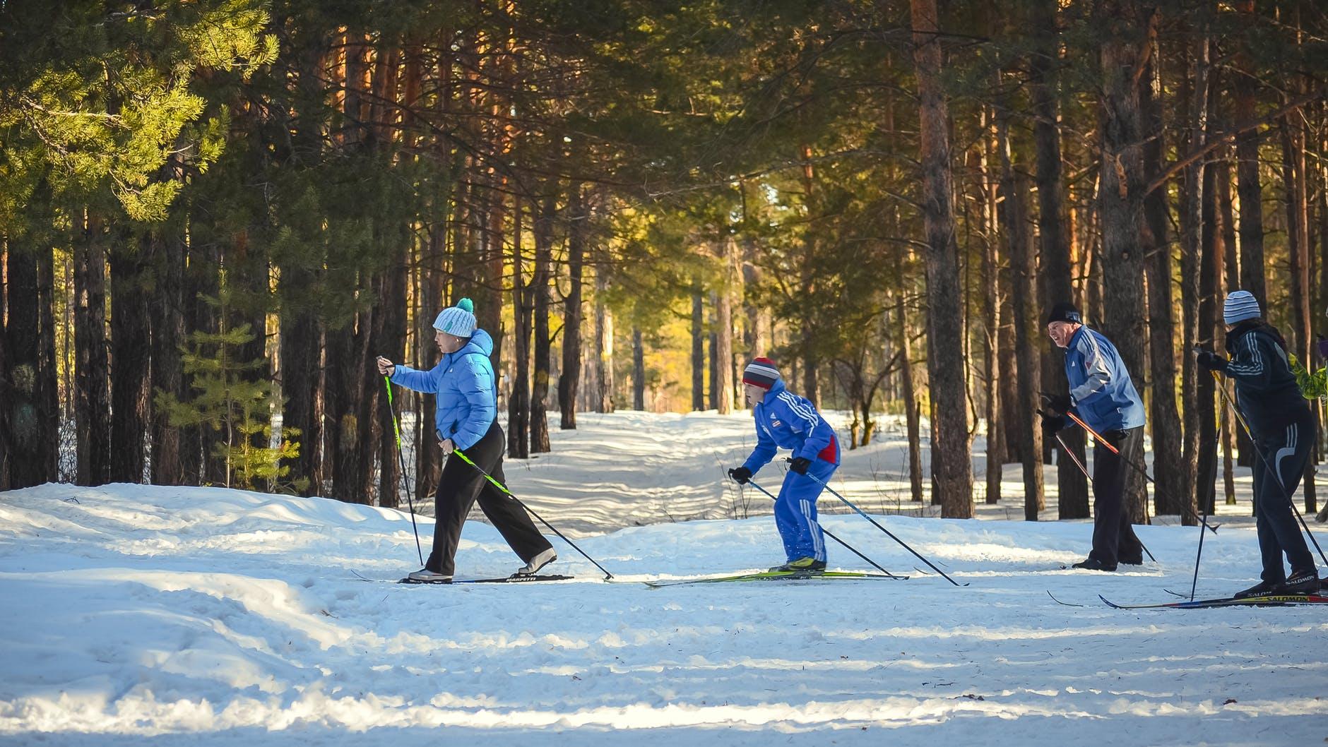 Best-Skis-Types