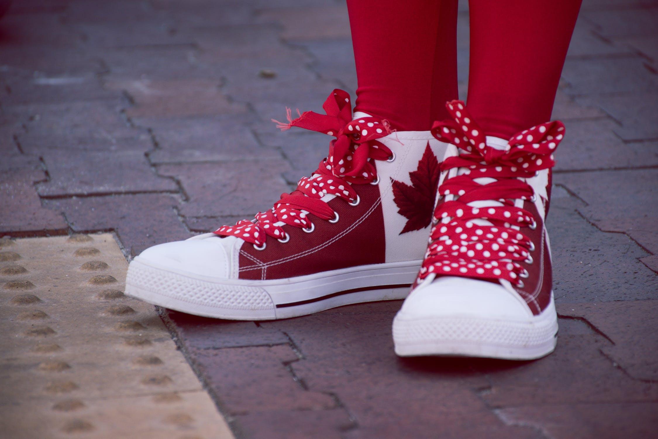 polka dot best shoelaces