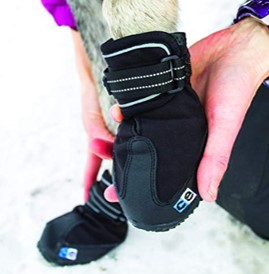 Canine Equipment Trail