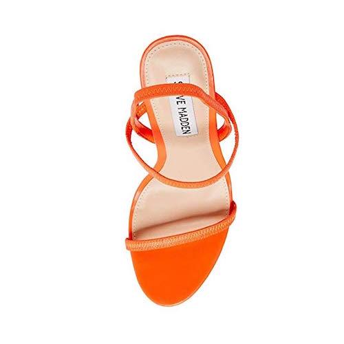Best Steve Madden Shoes Gabriella