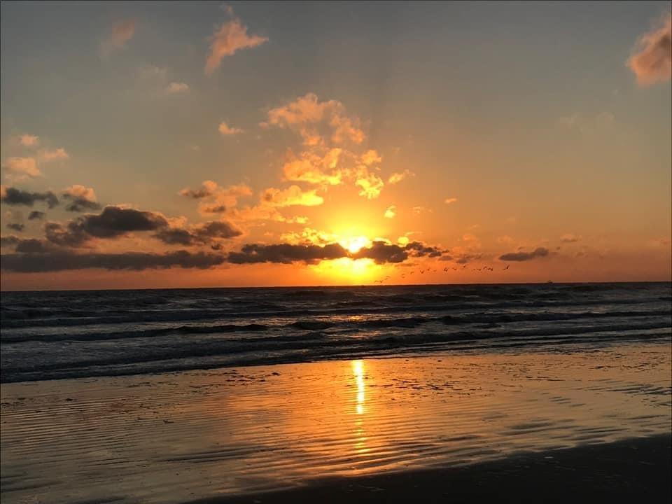 Sarah Byrne, New Smyrna Beach, FL
