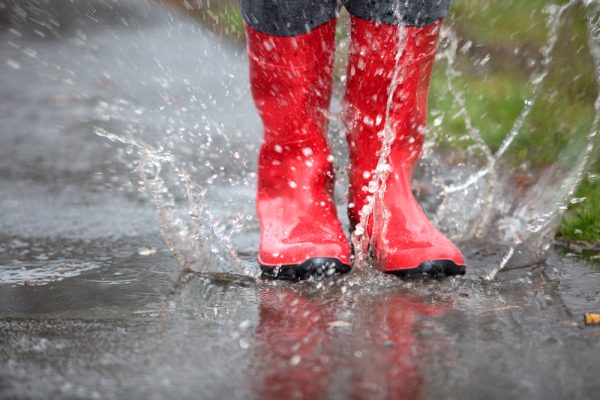 Best Wellington Boots Reviewed