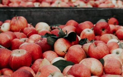 An in depth guide on apple cider vinegar foot soaks in 2018